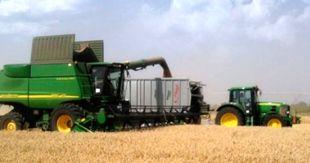 Melyik gabona nedvességmérő módszer a legpontosabb? Tudja meg még az aratás előtt!