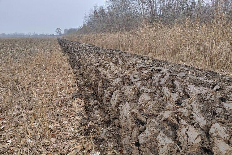réti talaj