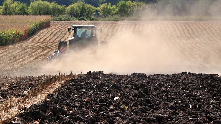 mezőgazdasági munka